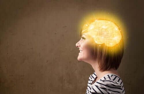 低炭水化物ダイエット:知的活動と感情面への影響