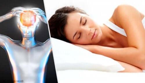 それぞれの年齢層に適切な睡眠時間とは? 睡眠中