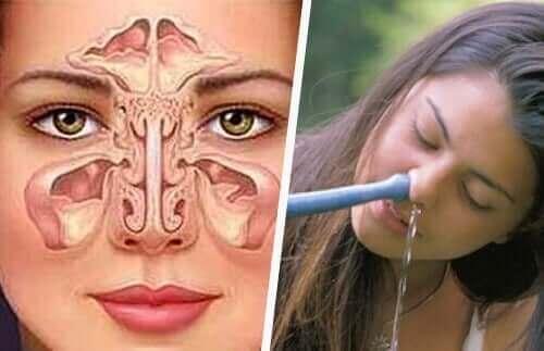 子供の鼻洗浄を正しく行う3つの方法 鼻の図解