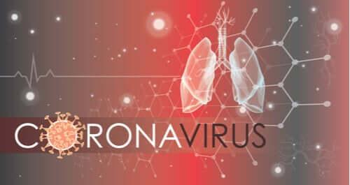 新型コロナウイルスは肺の細胞にどう感染するのか?