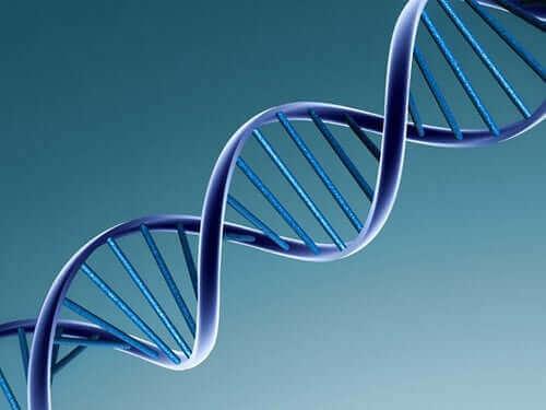 ウイルスはどのように変化するのか? DNA