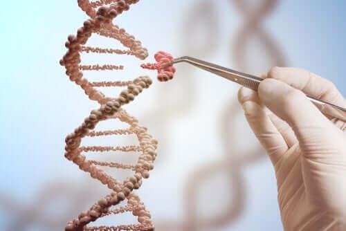 遺伝子の突然変異 DNA