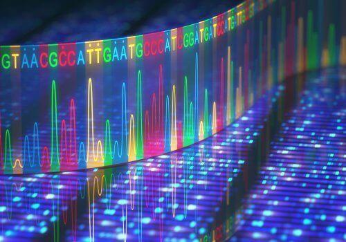遺伝子の突然変異 どこで発生