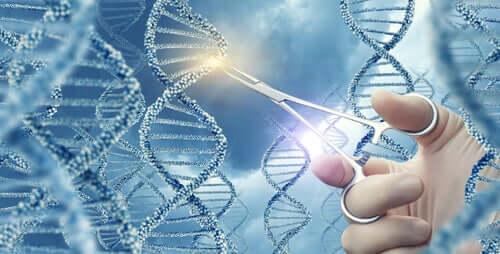 遺伝子の突然変異とは?