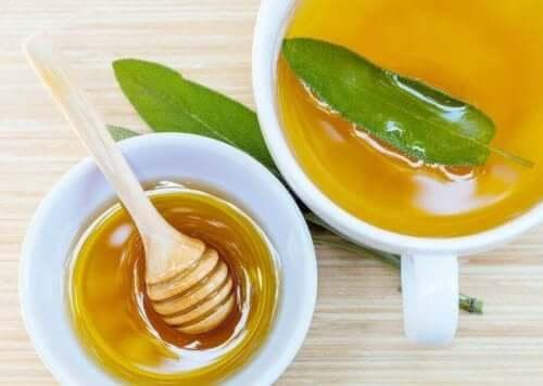 切り傷や擦り傷を緩和するセージとハチミツの自然療法 セージとハチミツ