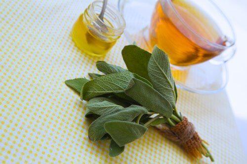 切り傷や擦り傷を癒すセージとハチミツの自然療法