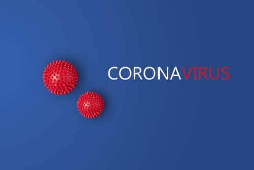 最新の研究が示唆する2つの新型コロナウイルス株