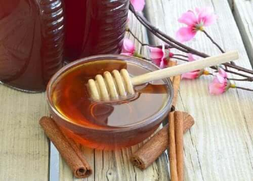 インフルエンザの緩和に役立つ蜂蜜療法3選 シナモンと蜂蜜