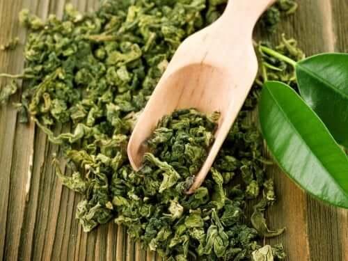 効果ある?緑茶をニキビの緩和に活用する方法 緑茶の茶葉