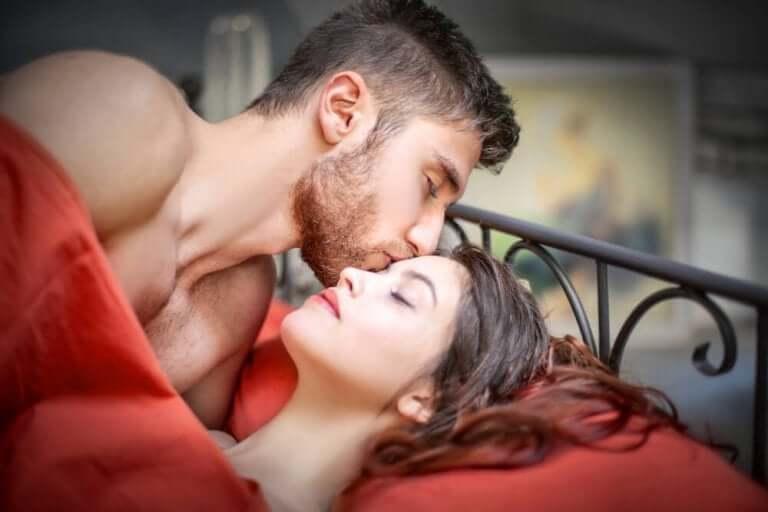 セックスとプチモルト
