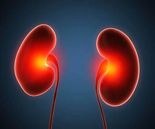 腎膿瘍の治療について知っておくべきこと