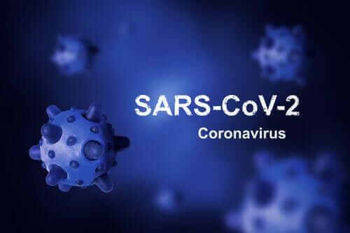 コロナウイルスはどこから来たの?根絶できる?