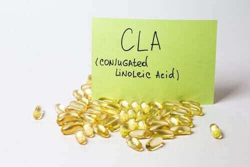 共役リノール酸の持つ健康上の利点