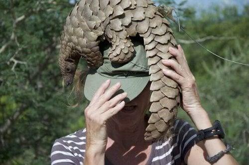 サンゼンコウを持つ女性