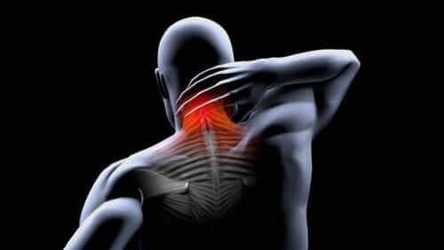 筋肉の拘縮:予防と治療法について