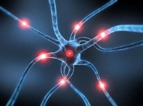 ラサギリンとその体への影響 パーキンソン病