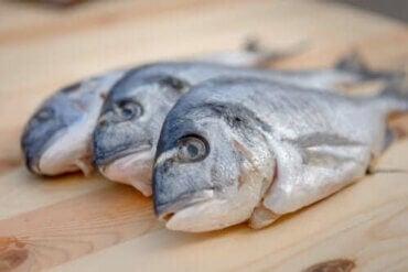 【どんなリスクが?】魚に含まれる水銀は心配すべき?