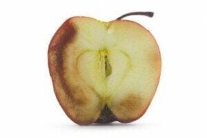 【栄養素も変化する?】酸化したフルーツを食べるとどうなる?