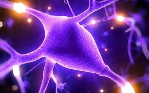 高マグネシウム血症:血中のマグネシウム濃度が高い状態 血中のイラスト