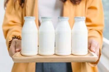 どっちがいい? 全脂肪VS低脂肪の乳製品