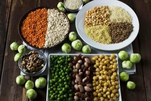 タンパク質のさまざまな供給源 タンパク質の体内での働き