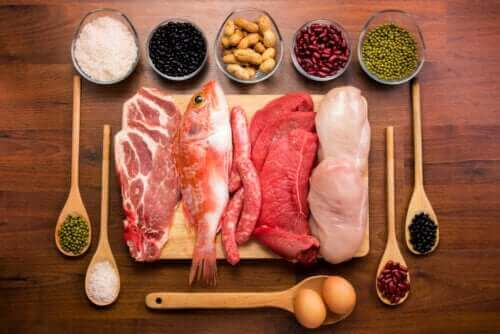 積極的に取ろう タンパク質の体内での働きについて