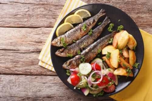 【魚を食べよう】イワシの効能3つ
