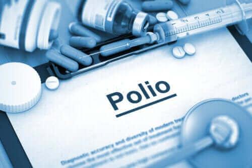 ポリオの種類について知っておくべきこと