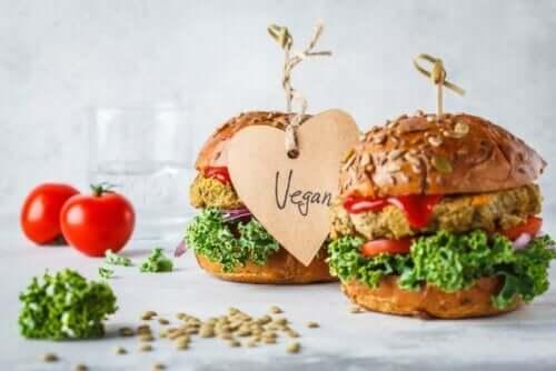 機能に応じた分類:食品群について詳しく学ぼう ビーガンバーガー