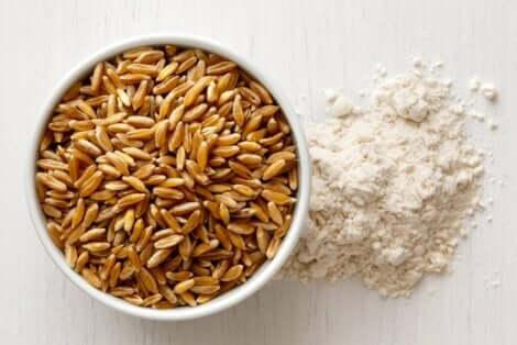 カムート 穀物カムートの特性と効果について