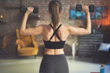 【筋トレ】ダンベルを使う背中のおすすめエクササイズ