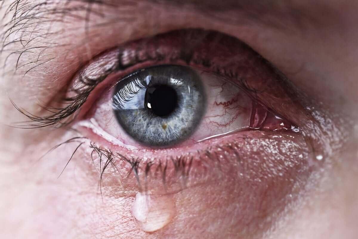 詳しく知りたい!涙目が起こる原因について 涙が流れる目