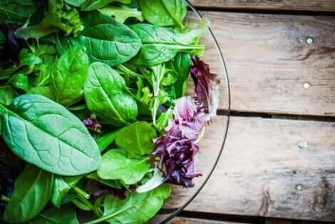 葉野菜 ヴィーガンが摂るべきサプリメント