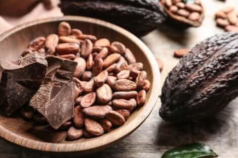 カカオビーンズ 最も健康的なチョコレートとは?