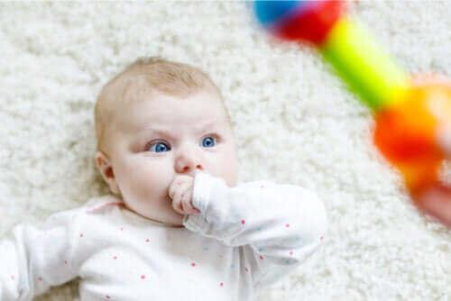 赤ちゃんがじっと見つめるのはなんで?